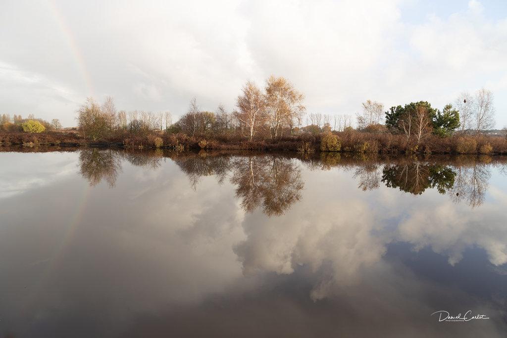Marais blayais