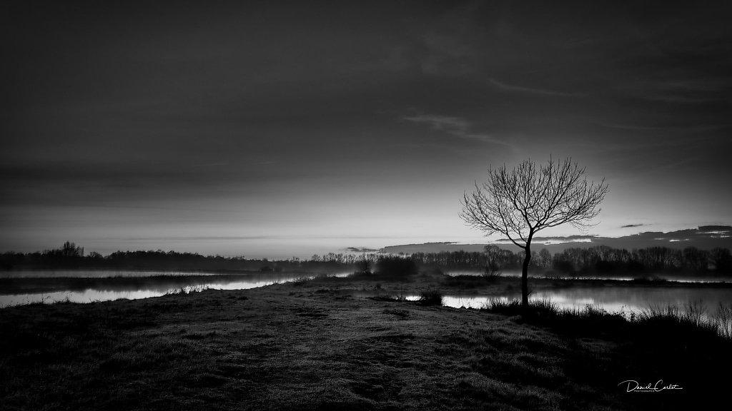 Marais blayais-Gironde